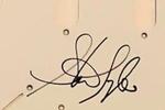 Steven Tyler Autograph