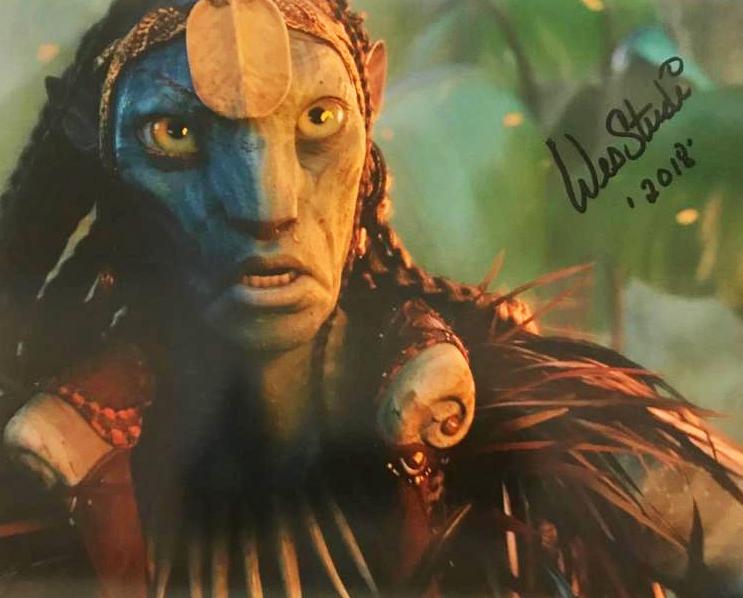 Wes Studi Autograph by Fanmail TTM